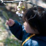 春や秋の子供の服装は?~4月から保育園!0~2歳子供服選びのポイント~