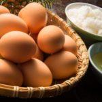 子供や赤ちゃんって生卵・半熟卵はいつから食べられる?食中毒やアレルギーの症状も!