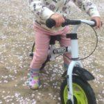 三輪車?バランスバイク?うちの子供(2歳)には「enkeeo」を買った!口コミも